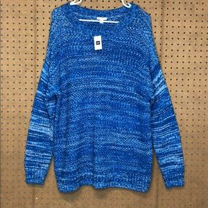 Gap Blue/White thick sweater